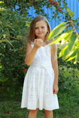 Little girl picks apples in an apple orchard — Stock Photo