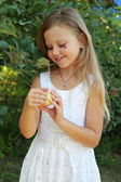 Girl rips off apples from the tree — Stock Photo