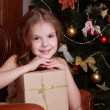 Little girl with Christmas present — Stock Photo #35239663