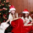 Girls playing with dog on Christmas — Stock Photo #35242171