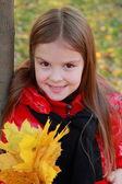 Garota no contexto das folhas caídas — Foto Stock