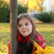 Stock Photo: Little girl at autumn time
