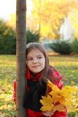 Little child in autumn park — Stok fotoğraf