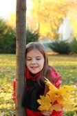 Criança no parque outono — Foto Stock