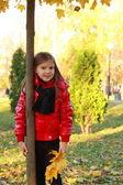 Little child in autumn park — Zdjęcie stockowe