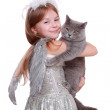 Angel playing with British cat — Stock Photo #35922287
