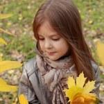 Little girl at autumn park — Stock Photo #35943783