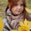 Little girl at autumn park — Stock Photo #35943849