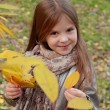 Little girl at autumn park — Stock Photo #35943917