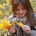 Little girl at autumn park — Stock Photo #35944135