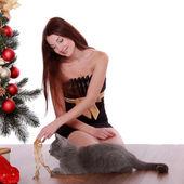 Mujer jugando con gato cerca de árbol de navidad — Foto de Stock