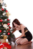 Woman with cat over Christmas tree — Stock Photo