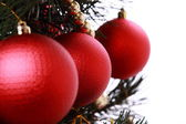 Red balls on christmas tree — Stock Photo