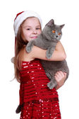 Little girl with her new cat — Photo
