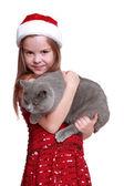 Little girl with her new cat — Foto de Stock