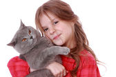 Girl holding British cat — Stock Photo
