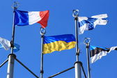 European flags in Moscow — Stock fotografie