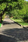 Natural green park — Stock fotografie