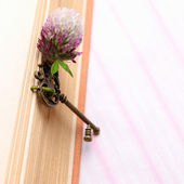 Antique key with flower lies on the book — Stock Photo