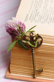 Key with a flower and old book — Stock Photo