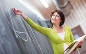 Pretty young teacher writing on the blackboard — Stock Photo