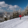Cross-country skiing: young man cross-country skiing on a lovely - ストック写真