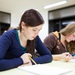 Lassroom full of students — Foto Stock