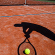 Shadow of a tennis player in action on a tennis court (conceptua — Stock Photo #17128945