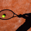 Постер, плакат: Shadow of a tennis player in action on a tennis court conceptua