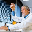 Senior male researcher carrying out scientific research in a lab — Stock Photo #18534889