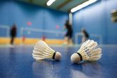 Badminton - badminton courts with players competing, shuttlecocks in the foreground — Foto Stock