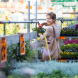 Young woman buying flowers at a garden center - Stok fotoğraf