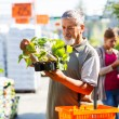Senior man buying strawberry plants in a gardening centre — Stock Photo