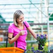Young woman buying flowers at a garden center — Stock Photo #22660417