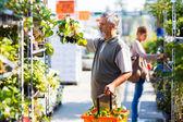 Senior man buying strawberry plants in a gardening centre — Stock Photo