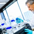 Senior male researcher carrying out scientific research in a lab — Stock Photo #23461128