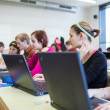 College students sitting in a classroom, using laptop computers — Stock Photo