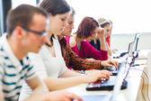 Studenten zitten in een klaslokaal, met behulp van laptopcomputers — Stockfoto