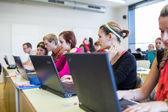 Estudantes universitários sentado em uma sala de aula, usando computadores portáteis — Foto Stock