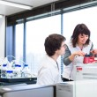 Two young researchers  in a lab — Stock Photo #40427399