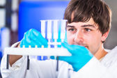 Male researcher carrying out scientific research — Stockfoto