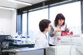 два молодых исследователя в лаборатории — Стоковое фото