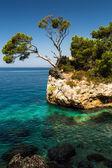 Splendid seacoast of Croatia — Stock Photo