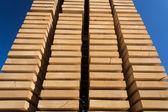 Wooden studs — Foto de Stock