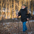 Senior man nordic walking — Stock Photo