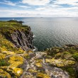 Isle of May, Scotland — Stock Photo #46639027