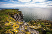 Isle of May, Scotland — Stock Photo