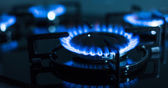 Flames of gas stove — Stock Photo