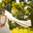 Bride on her wedding day — Stock Photo #49030613