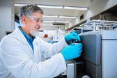 Senior male researcher — Stock Photo
